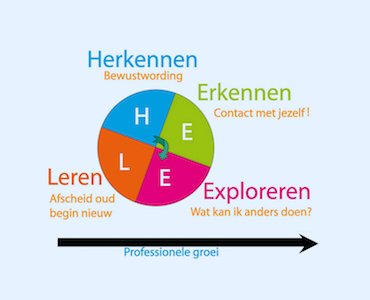 HEELmodel infographic Herkennen Erkennen Exploreren Leren