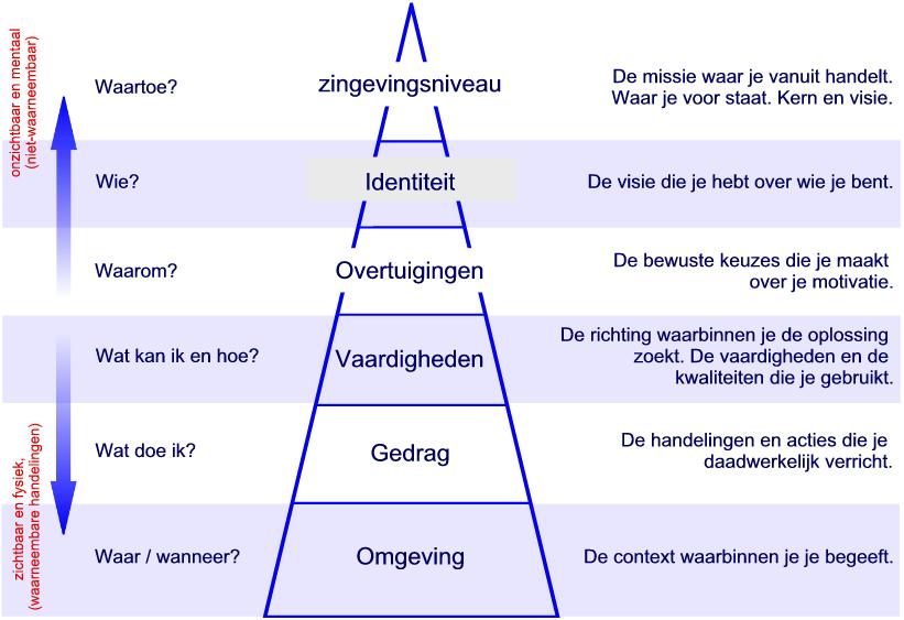 piramide met logische niveaus
