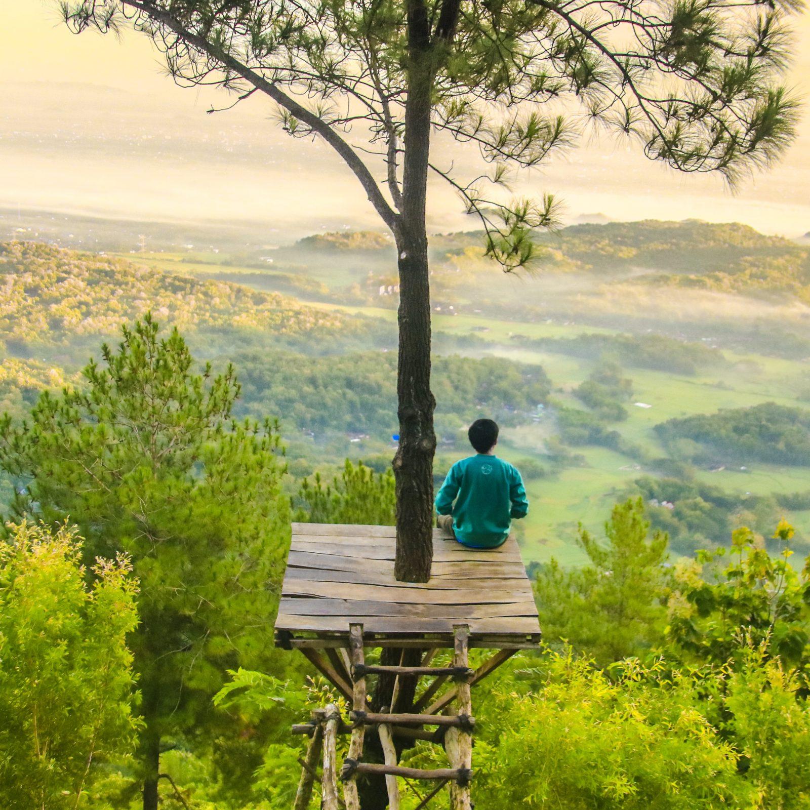 zelfvertrouwen man op een vlonder in boom kijkend over groen landschap